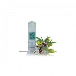 Phytogamme Phytominceur crème 150ml
